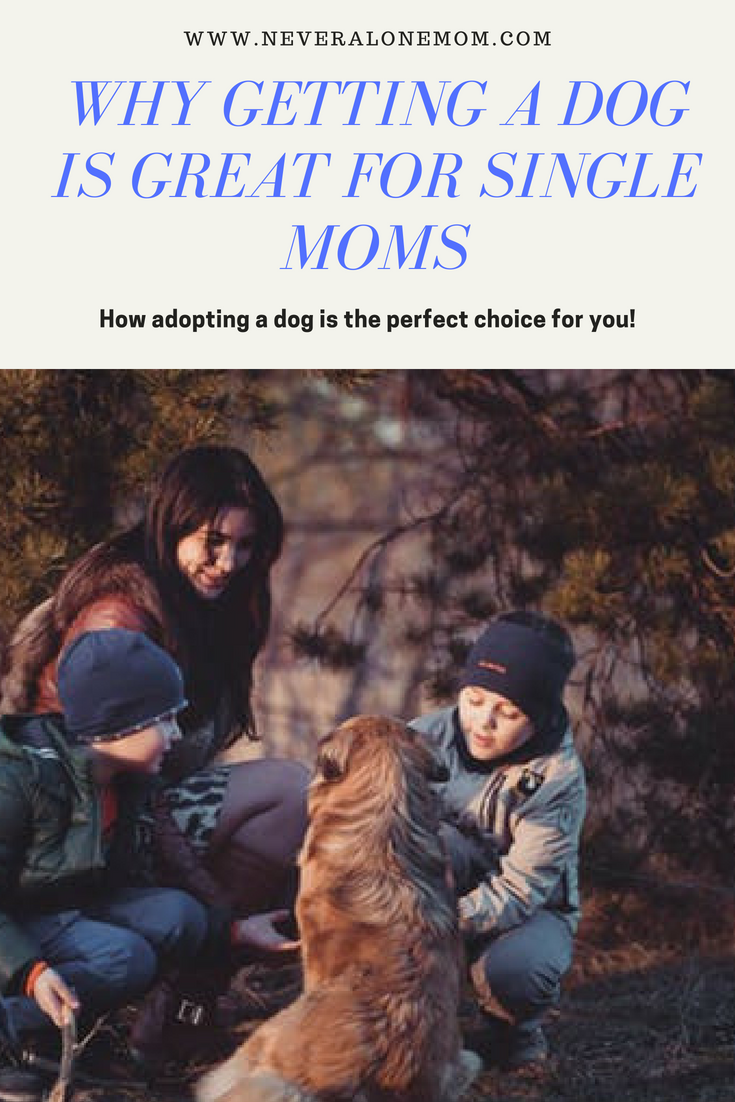 Why getting a dog is the right options for single moms | neveralonemom.com